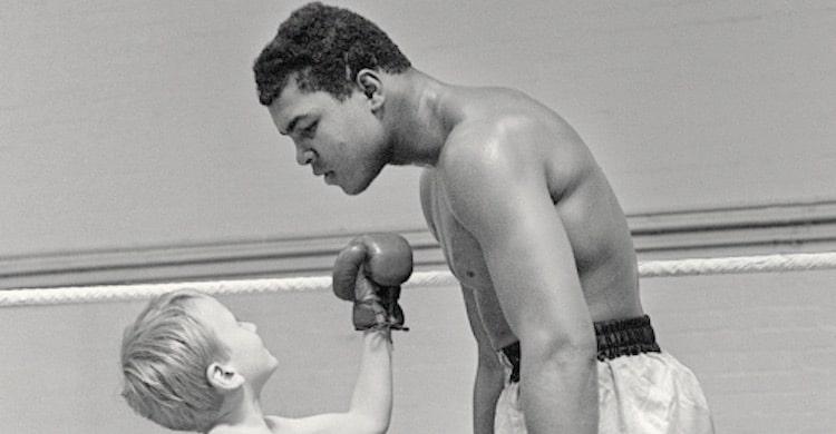 Boxe et traduction, sports de combat